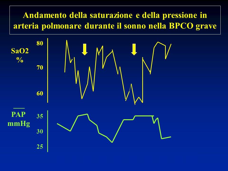 Andamento della saturazione e della pressione in arteria polmonare durante il sonno nella BPCO grave