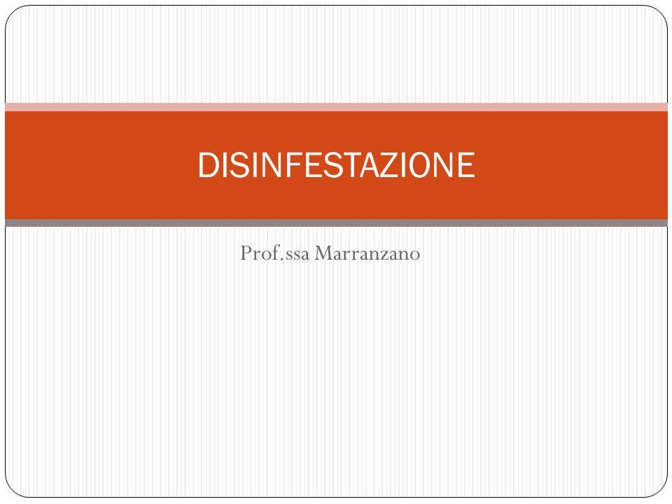 DISINFESTAZIONE Prof.ssa Marranzano