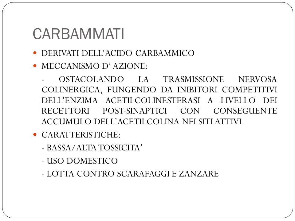 CARBAMMATI DERIVATI DELL'ACIDO CARBAMMICO MECCANISMO D' AZIONE: