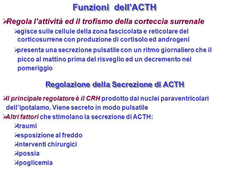 Regolazione della Secrezione di ACTH