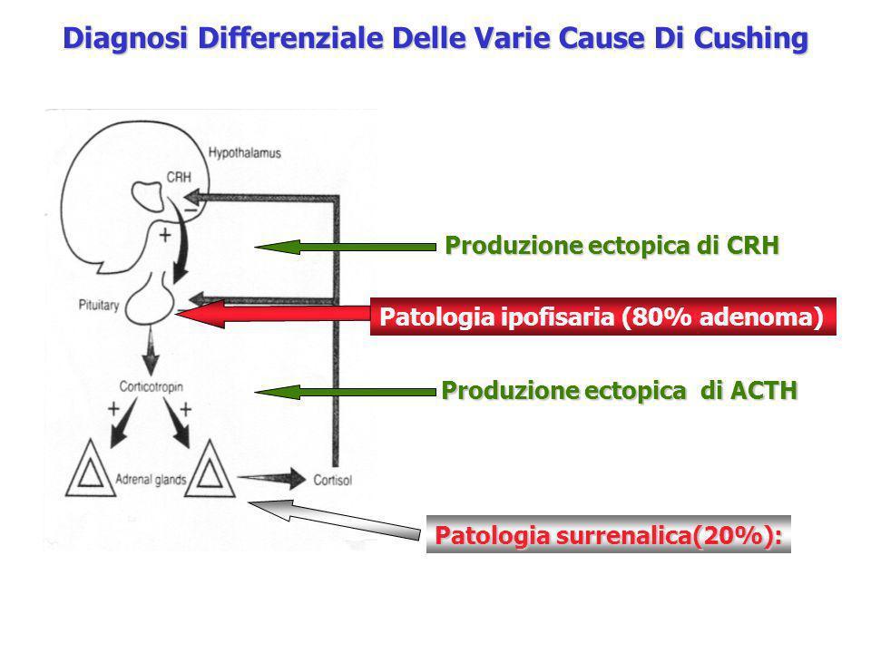 Diagnosi Differenziale Delle Varie Cause Di Cushing