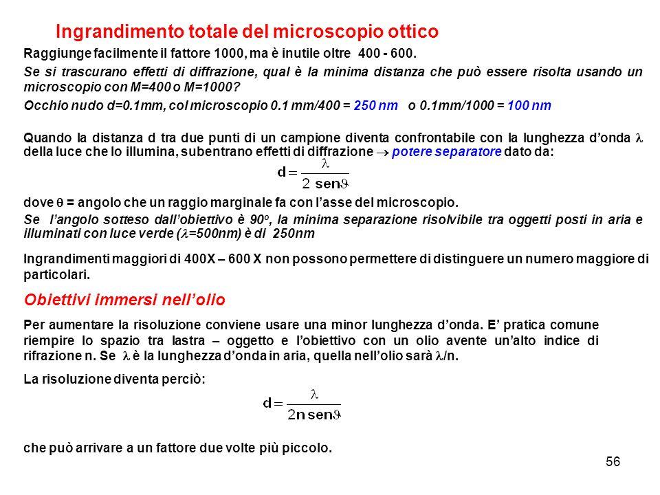 Ingrandimento totale del microscopio ottico