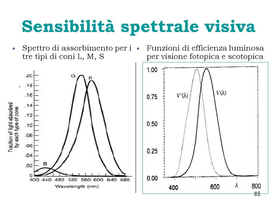 Sensibilità spettrale visiva