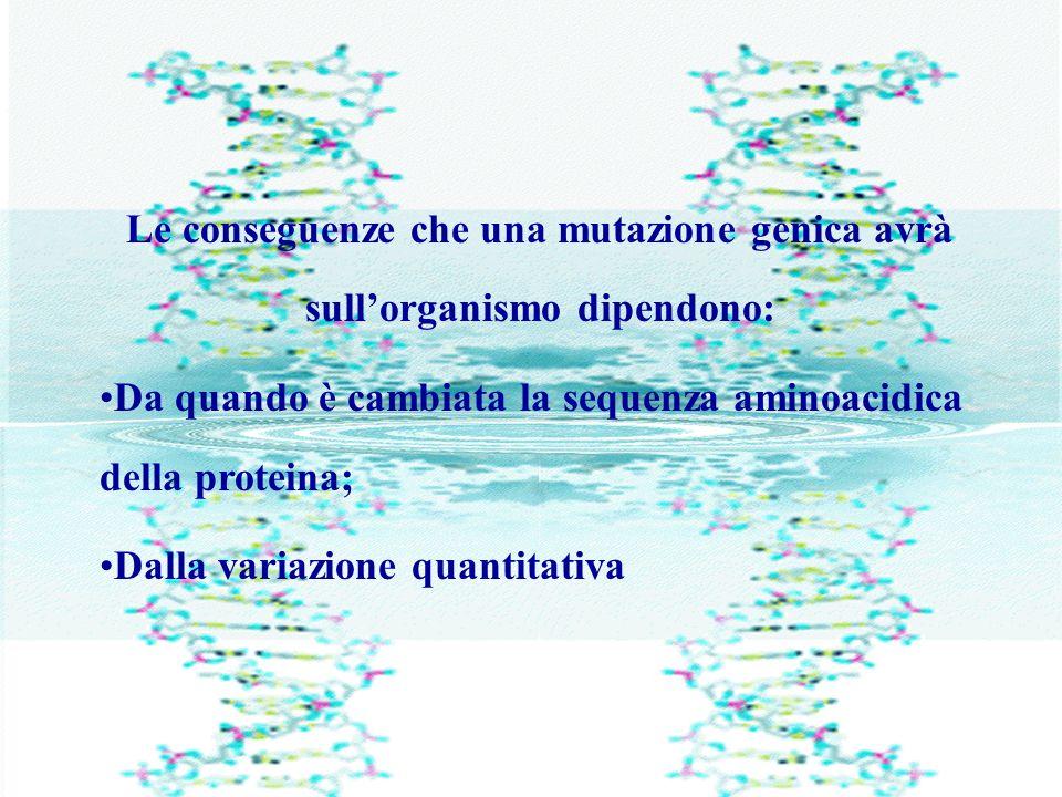 Le conseguenze che una mutazione genica avrà sull'organismo dipendono: