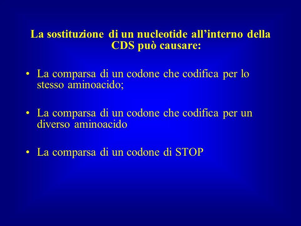 La sostituzione di un nucleotide all'interno della CDS può causare: