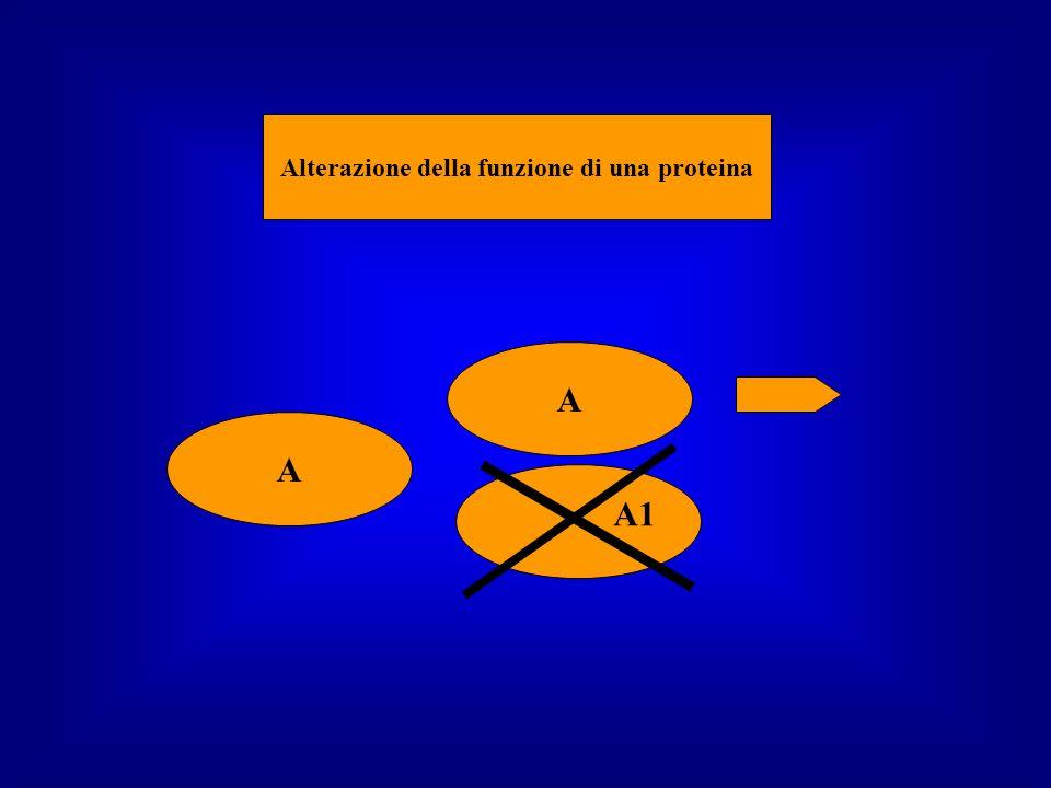Alterazione della funzione di una proteina