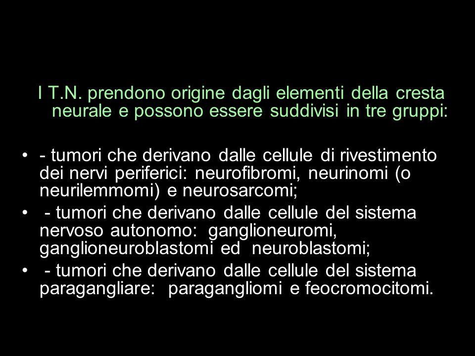 I T.N. prendono origine dagli elementi della cresta neurale e possono essere suddivisi in tre gruppi: