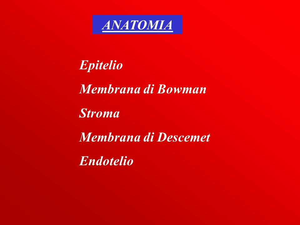 ANATOMIA Epitelio Membrana di Bowman Stroma Membrana di Descemet Endotelio
