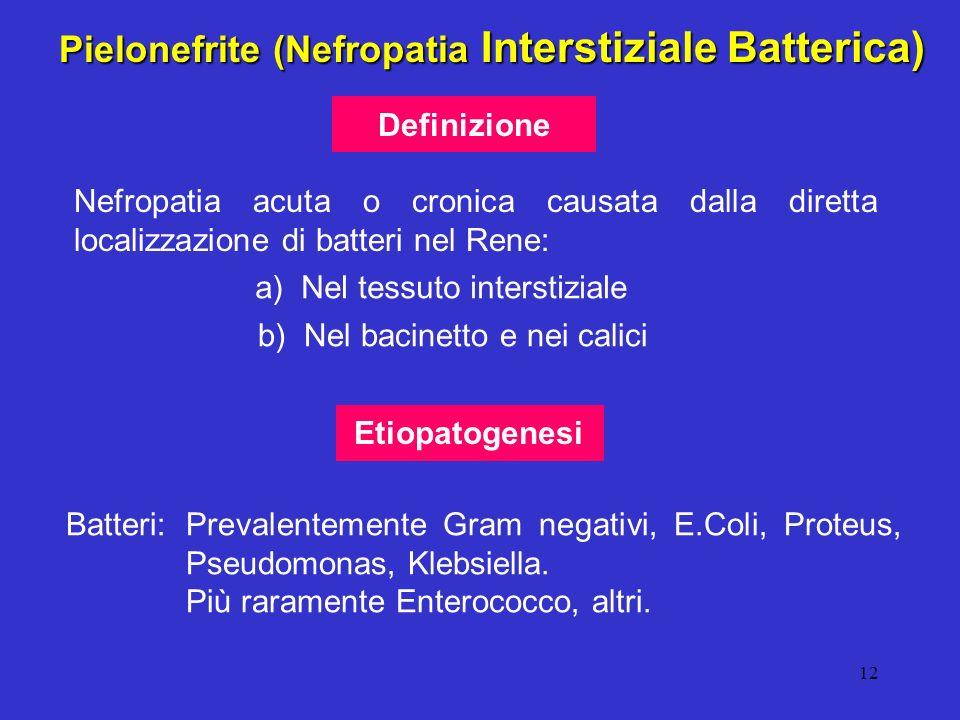 Pielonefrite (Nefropatia Interstiziale Batterica)