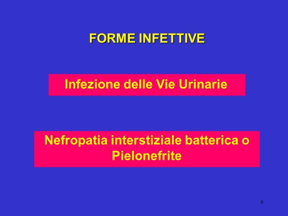 Infezione delle Vie Urinarie