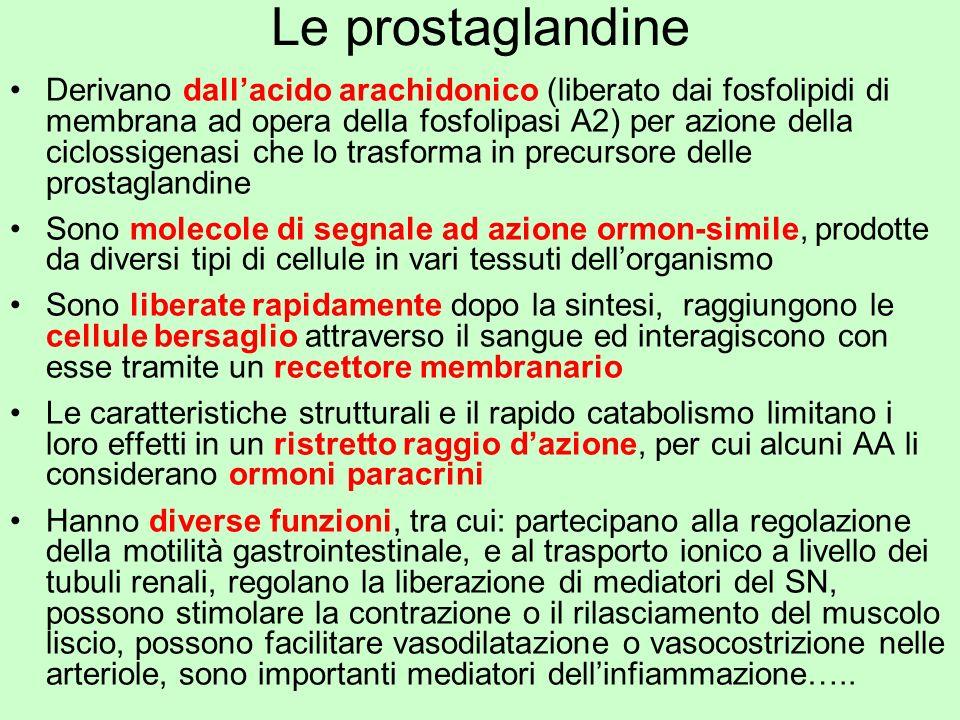 Le prostaglandine