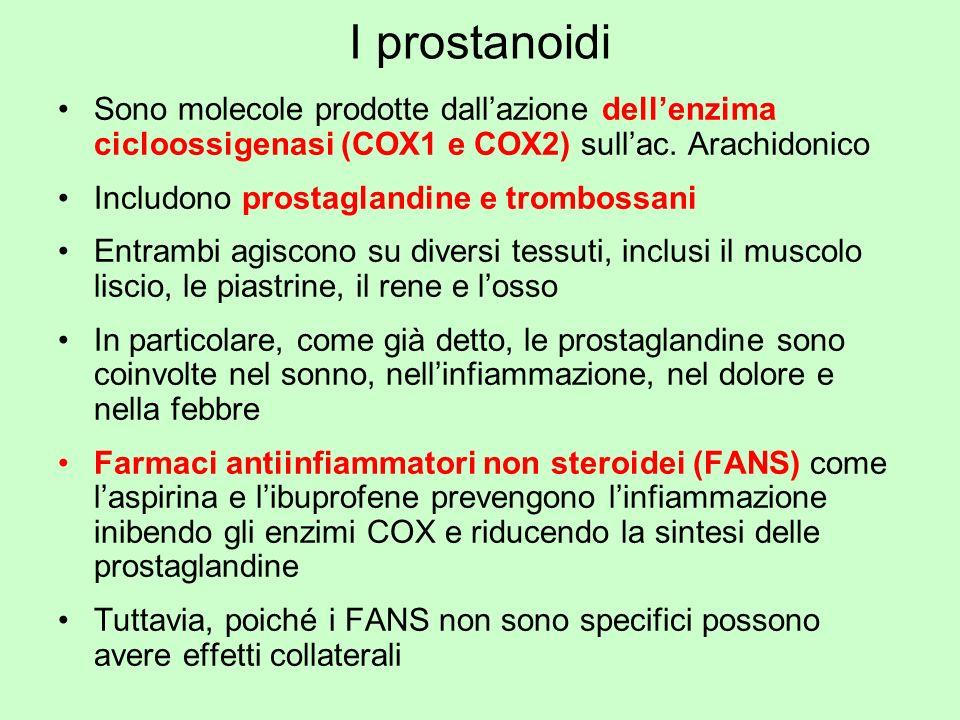 I prostanoidi Sono molecole prodotte dall'azione dell'enzima cicloossigenasi (COX1 e COX2) sull'ac. Arachidonico.