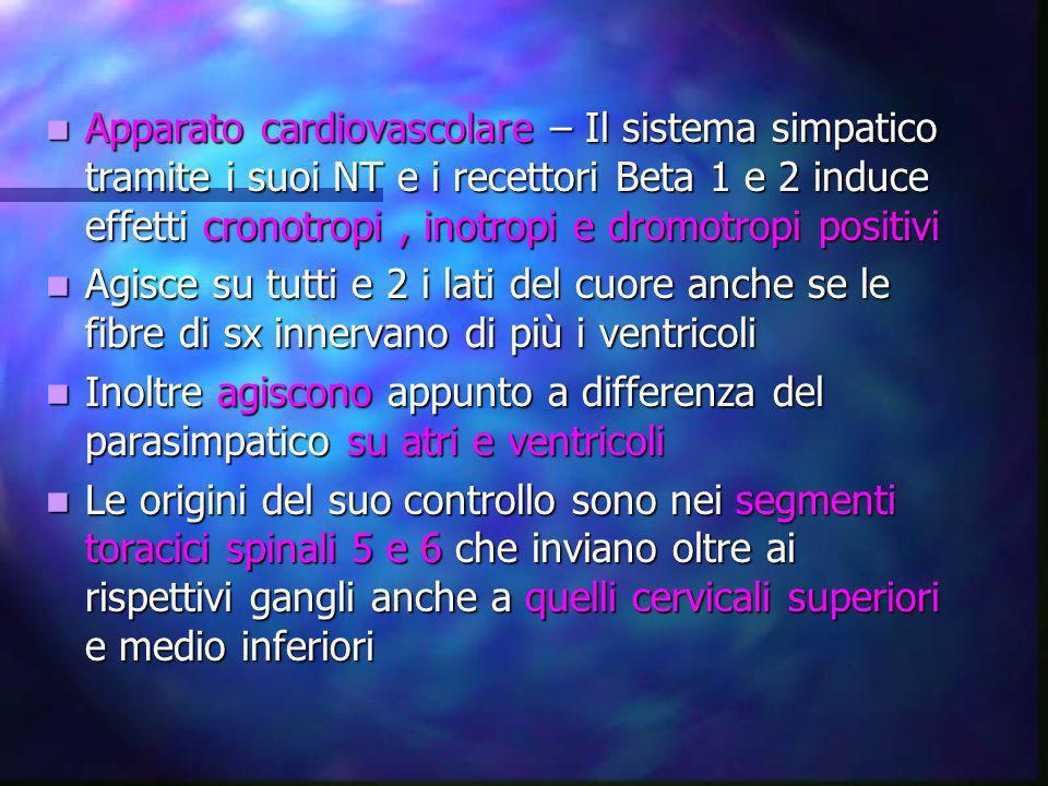 Apparato cardiovascolare – Il sistema simpatico tramite i suoi NT e i recettori Beta 1 e 2 induce effetti cronotropi , inotropi e dromotropi positivi
