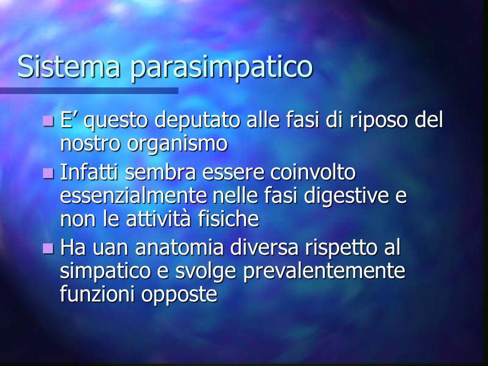 Sistema parasimpatico