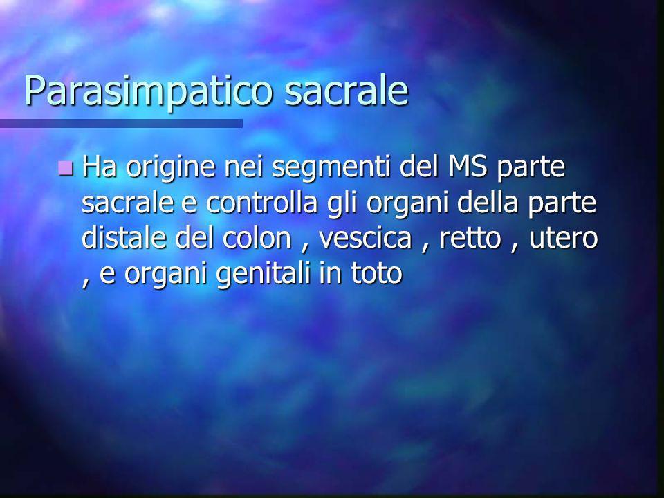 Parasimpatico sacrale