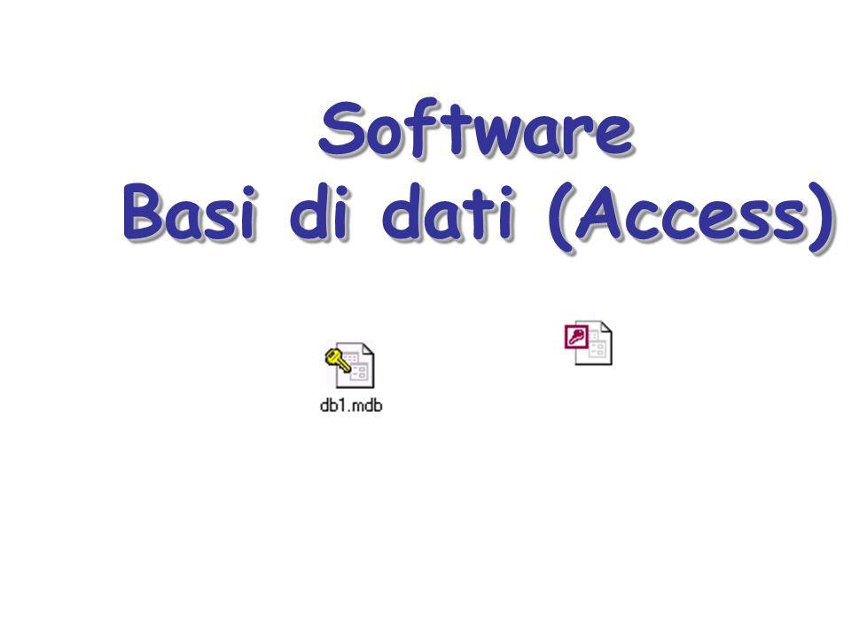 Software Basi di dati (Access)