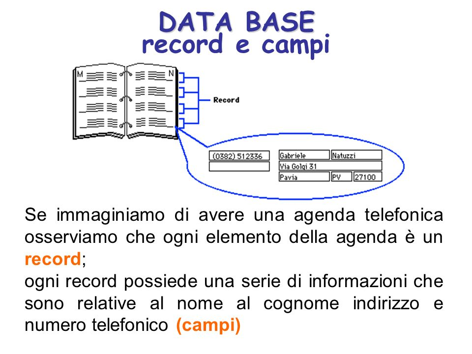 DATA BASE record e campi