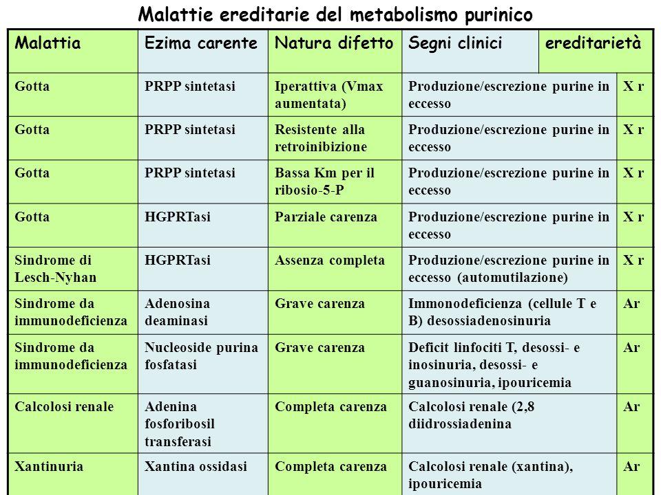 Malattie ereditarie del metabolismo purinico