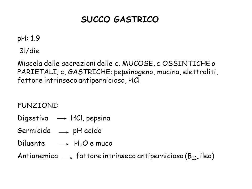 SUCCO GASTRICO pH: 1.9 3l/die