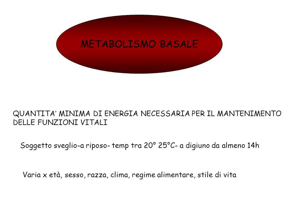 METABOLISMO BASALE QUANTITA' MINIMA DI ENERGIA NECESSARIA PER IL MANTENIMENTO DELLE FUNZIONI VITALI.