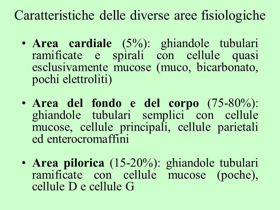 Caratteristiche delle diverse aree fisiologiche