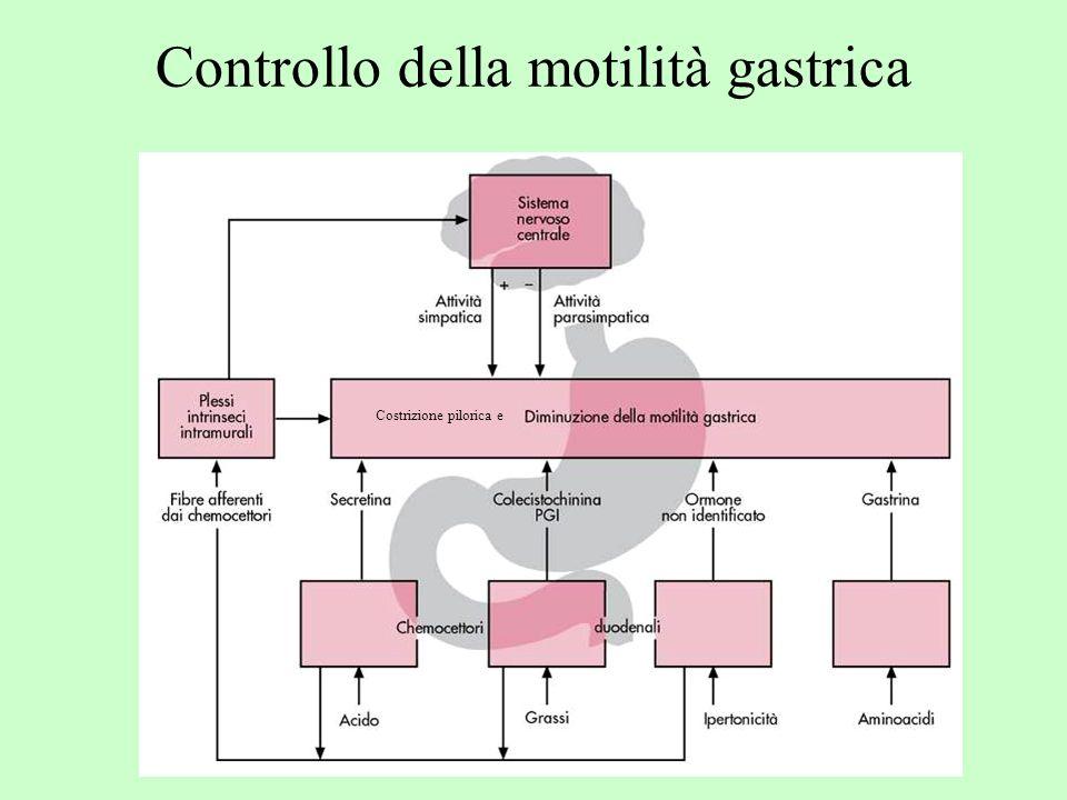 Controllo della motilità gastrica