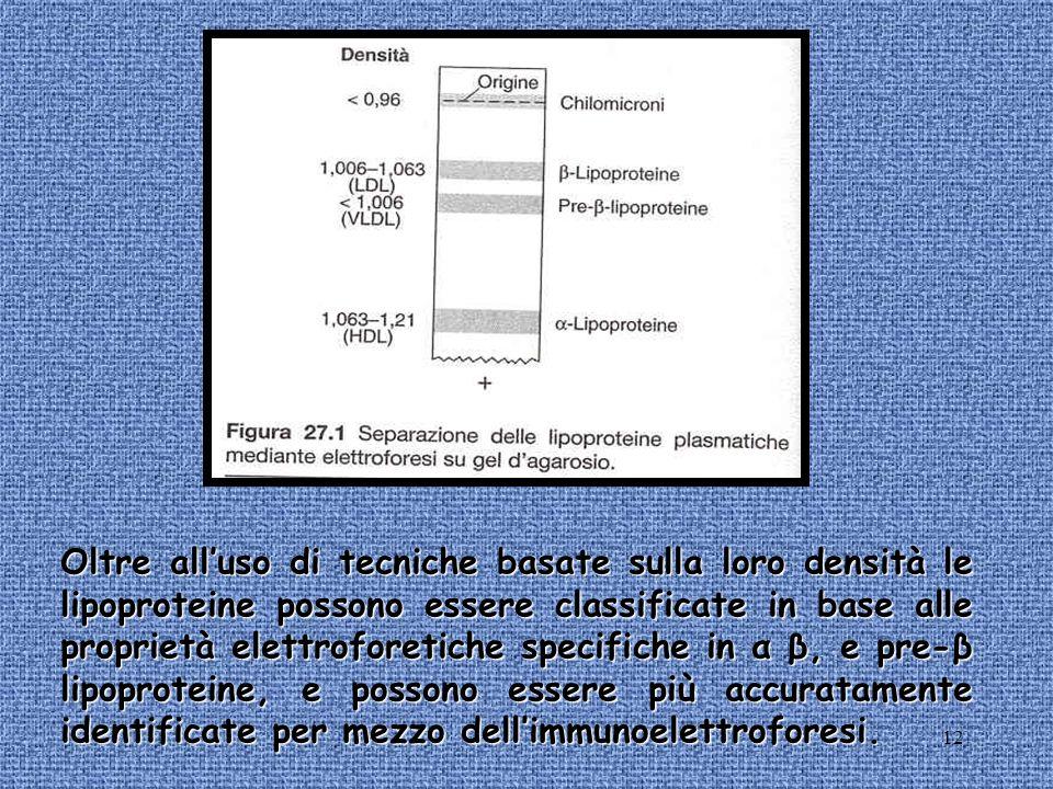 Oltre all'uso di tecniche basate sulla loro densità le lipoproteine possono essere classificate in base alle proprietà elettroforetiche specifiche in α β, e pre-β lipoproteine, e possono essere più accuratamente identificate per mezzo dell'immunoelettroforesi.