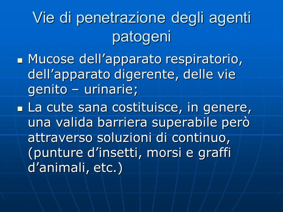 Vie di penetrazione degli agenti patogeni