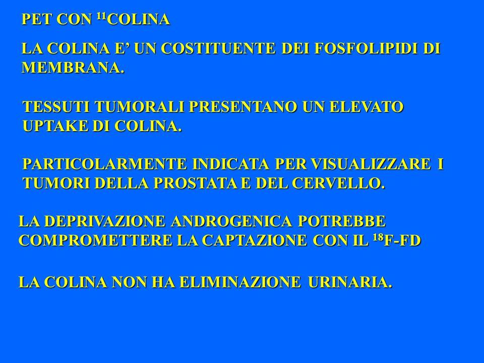 PET CON 11COLINA LA COLINA E' UN COSTITUENTE DEI FOSFOLIPIDI DI MEMBRANA. TESSUTI TUMORALI PRESENTANO UN ELEVATO UPTAKE DI COLINA.