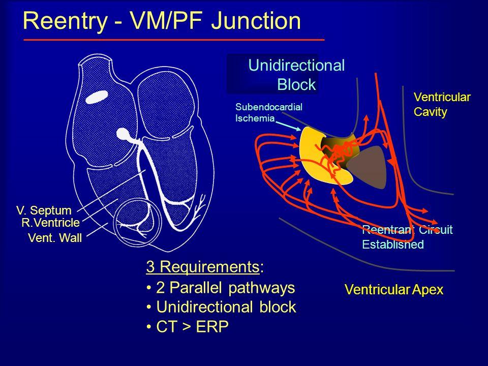 Reentry - VM/PF Junction