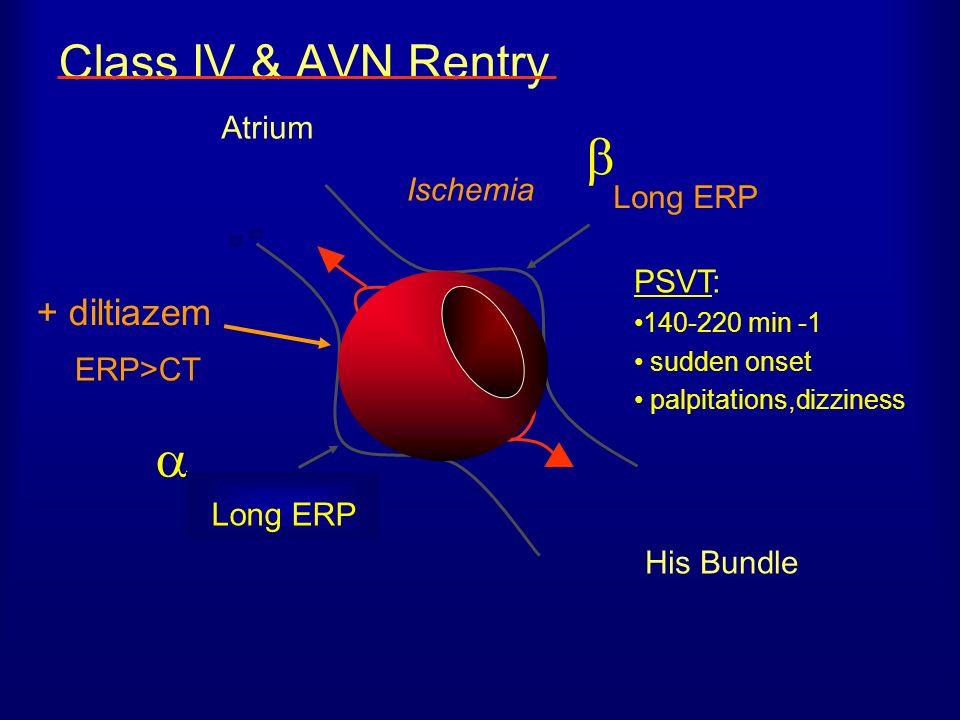   Class IV & AVN Rentry + diltiazem Atrium Ischemia Long ERP PSVT: