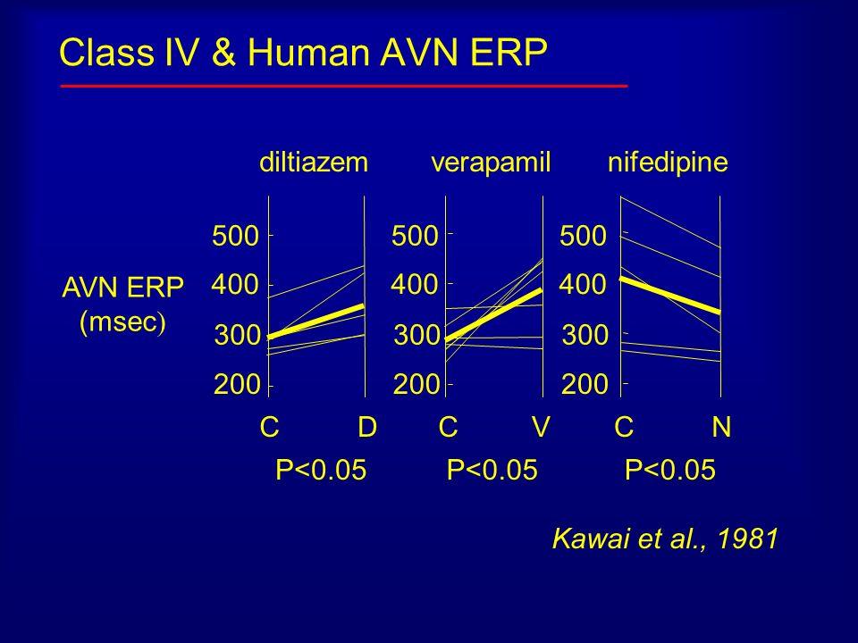 Class IV & Human AVN ERP diltiazem verapamil nifedipine 500 400 200