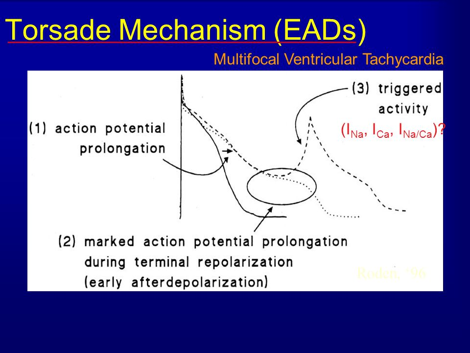 Torsade Mechanism (EADs)