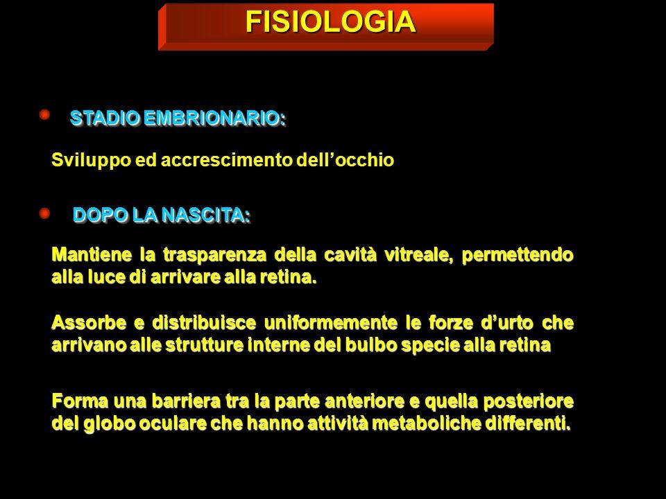 FISIOLOGIA STADIO EMBRIONARIO: Sviluppo ed accrescimento dell'occhio