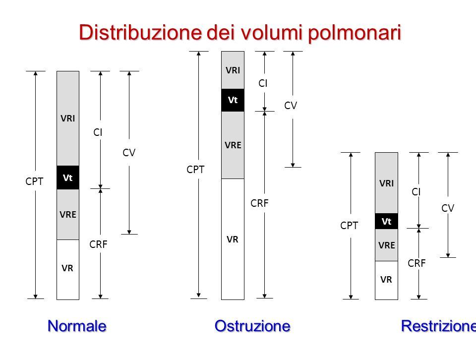 Distribuzione dei volumi polmonari