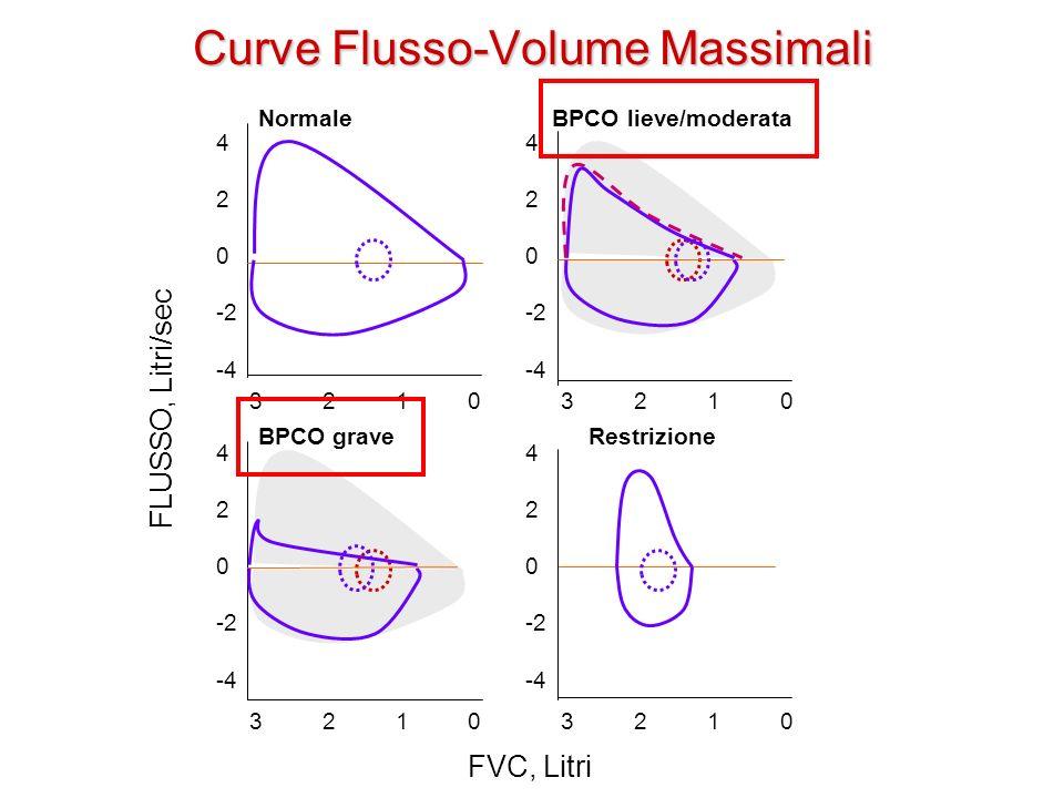 Curve Flusso-Volume Massimali