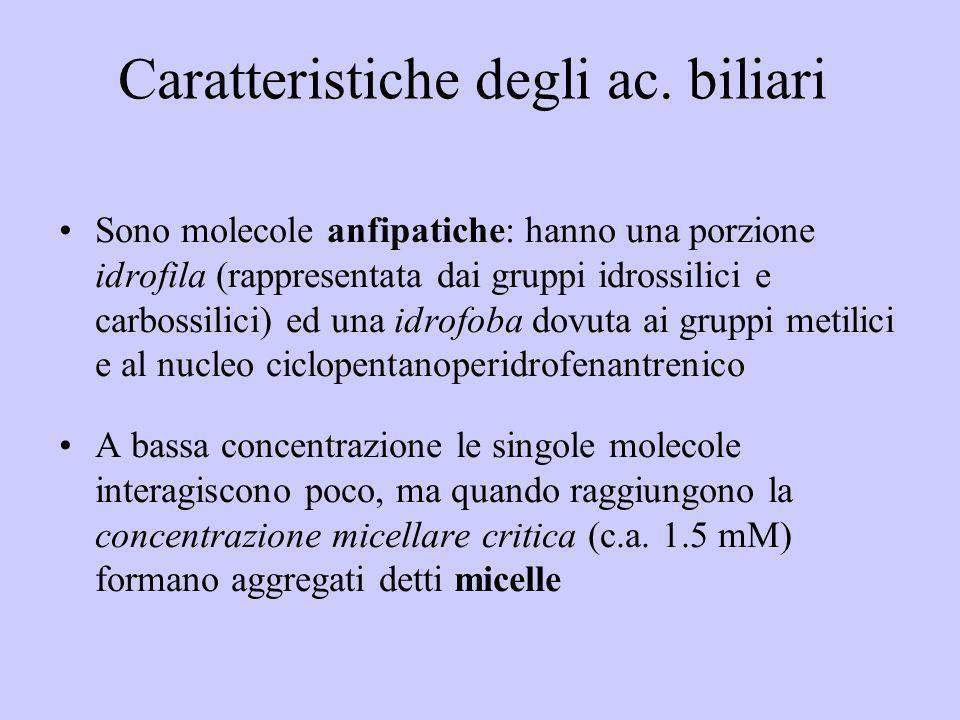 Caratteristiche degli ac. biliari