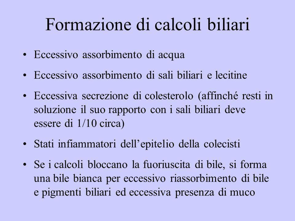 Formazione di calcoli biliari