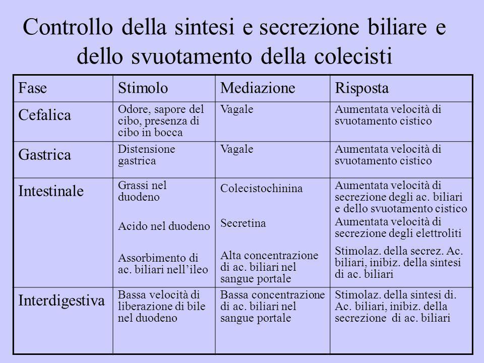 Controllo della sintesi e secrezione biliare e dello svuotamento della colecisti