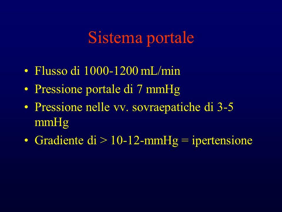 Sistema portale Flusso di 1000-1200 mL/min Pressione portale di 7 mmHg