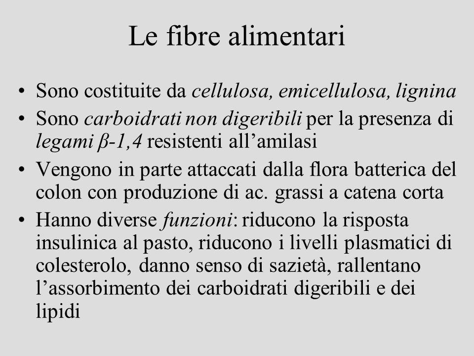 Le fibre alimentari Sono costituite da cellulosa, emicellulosa, lignina.