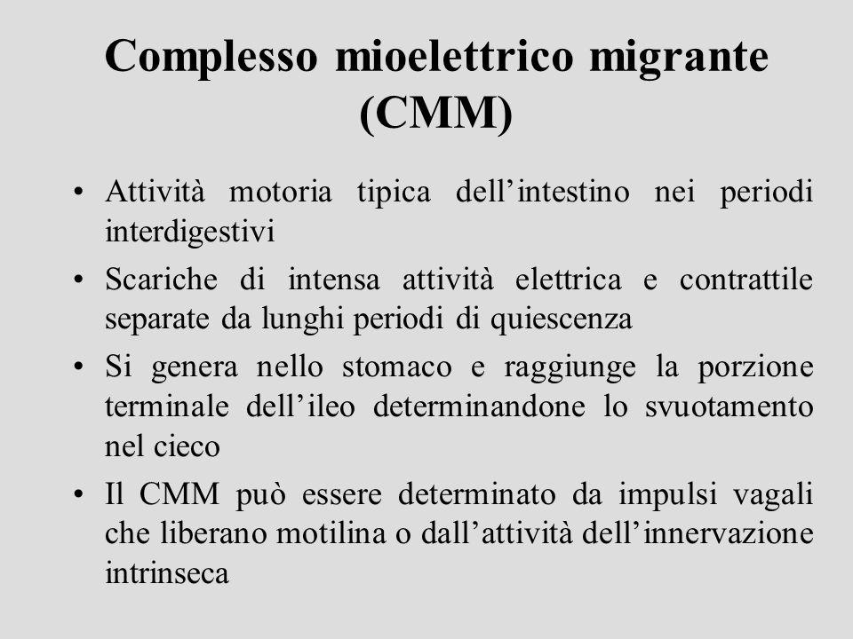 Complesso mioelettrico migrante (CMM)