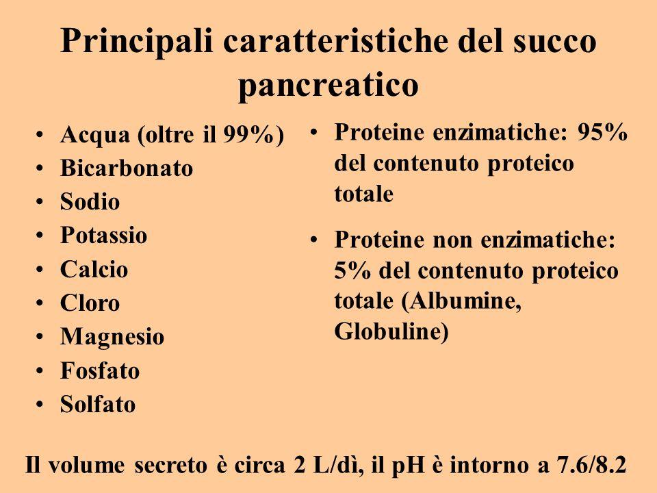 Principali caratteristiche del succo pancreatico