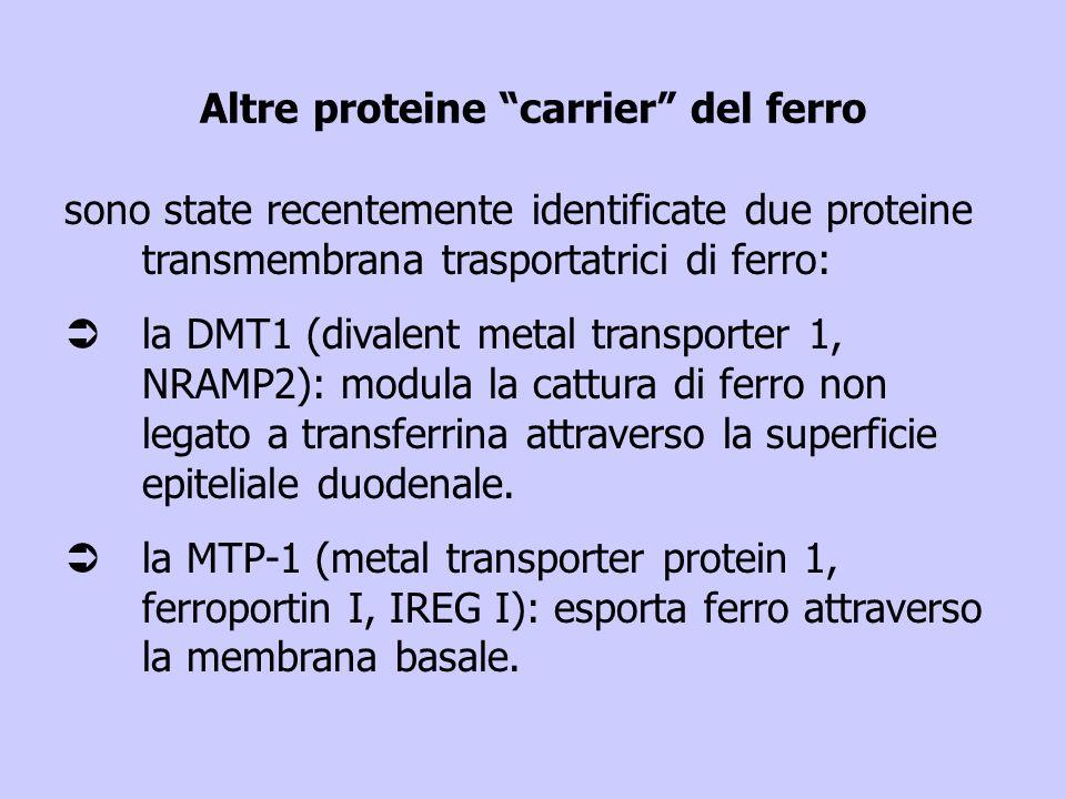 Altre proteine carrier del ferro