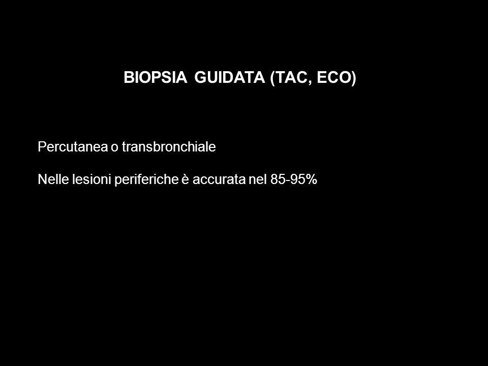 BIOPSIA GUIDATA (TAC, ECO)