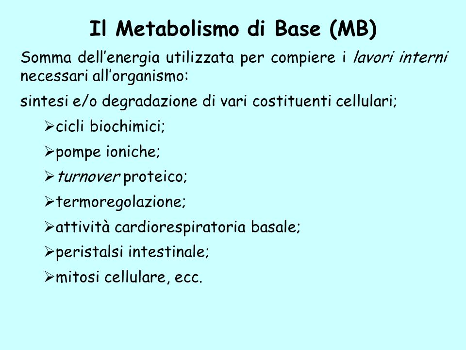 Il Metabolismo di Base (MB)
