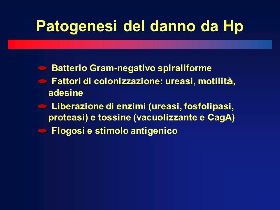 Patogenesi del danno da Hp