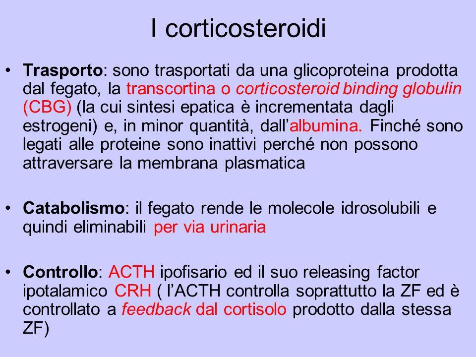 I corticosteroidi