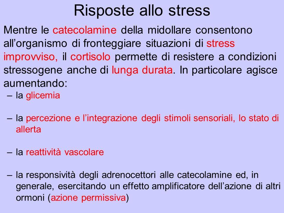 Risposte allo stress