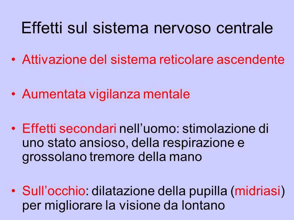 Effetti sul sistema nervoso centrale